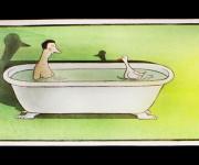 in vasca