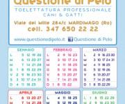 Calendario Toelettatura - Questione di Pelo