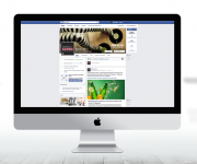 donnalike-facebook
