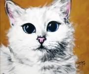 Blu occhi grandi