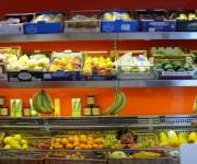 Frutteto Viel Milano - esposizione