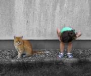 foto cell. bambina gatto