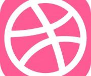 Dribbble > Portfolio e profilo
