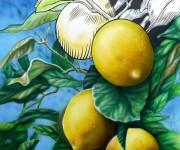 limoni 50x50.JPG