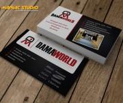 bv-aziendali-damaworld-maniac-studio