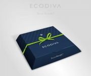 ecodiva gift package3_closed box