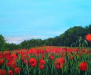 Dreaming springtime with poppies on canvas
