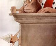 giudice scimmia