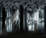 Labyrinth Foresta