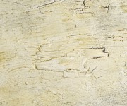 riproduzione opere d'arte di Roberto Demarchi per la Galleria Mercurio di Torino