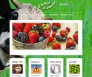 sito web gelateria