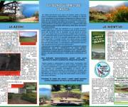 AMP_brochure_dentro