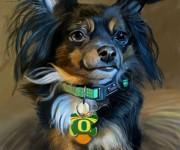 little dog_rez01