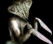 mantis man 005