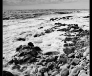 black and white near the sea - 07b_w-al
