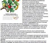 Carta & Media Strategie Redazionale Burgo Distribuzione
