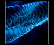 abstract_light_01296