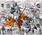 foglie e aquiloni