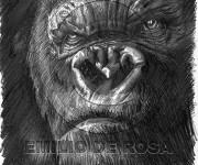 Kong-Peter Jackson\\s