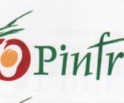 marchio Pinfruit