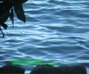 2002 acqua lago di garda - lazise paluroma