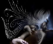 angelo valentina 1