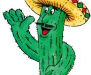 Cactus sombrero
