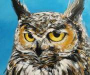 Funny owl II