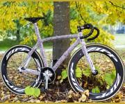 Lucius Bike 2