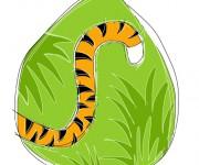 coda di tigre - terminAZIONIvettoriali
