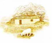 Fondo illustrazione per packagin Altana