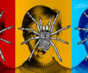 tarantula copia2
