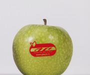 mela verde GTO_2