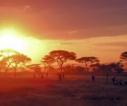 Tanzania Sunset - Serengeti