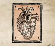 hart-1 copia