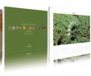 Burgo Distribuzione > Calendario 2008