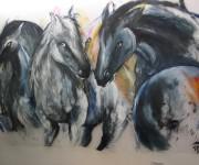 plexiglass cavalli
