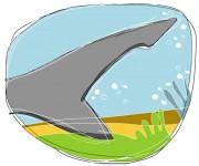 coda di squalo - terminAZIONIvettoriali
