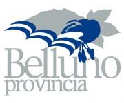 Realizzazione logo e immagine coordinata