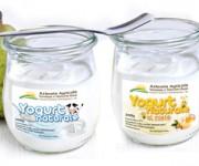packyogurt