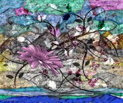 colore - digital image