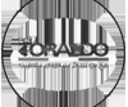 toraldo-logo
