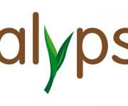 Burgo Distribuzione > Calypso carta patinata ecologica