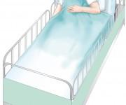illustrazione per pannello