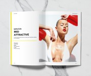 Silver and Gold Magazine N°5 - Interno