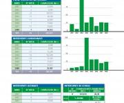 IVCA Bilancio Relazione Annuale 2008