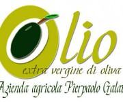 Logo Olio