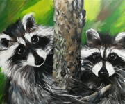 Two lovely guys - Portrait of raccoons