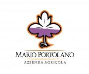 Logo per azienda vitivinicola 06 (2)