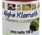 alghe-klamat